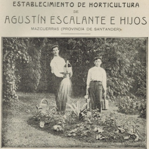 Agustín Escalante e Hijos